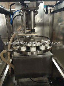 Automatic Pickles Filling Machine pictures & photos