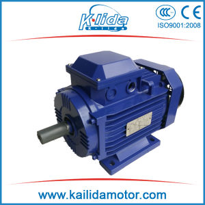IEC GOST (ANP) Standard Three Phase AC Electric Motor pictures & photos