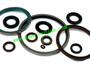 NBR/EPDM Rubber Gasket for Pipe pictures & photos