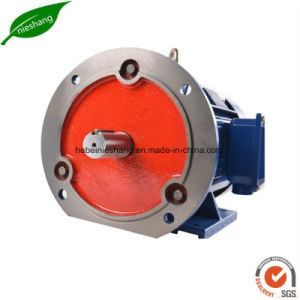 Three Phase Electric Induction Electric Motor pictures & photos