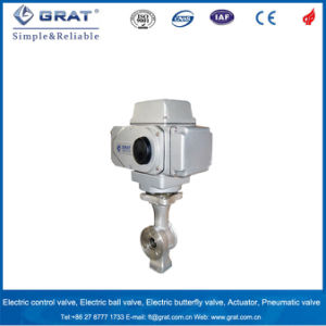 Grat Small Flow Control Electric Ball Valve pictures & photos