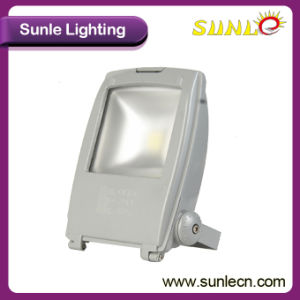 Outdoor 50W Competitive Price LED Flood Light for Sale pictures & photos