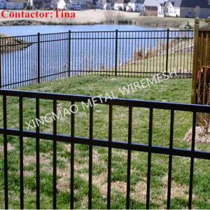 Swimmng Pool Fencing /Ornamental Aluminum and Steel Fencing (XM3-31) pictures & photos