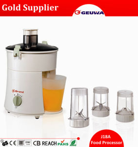 Quality 300W Copper Motor CE Electric Mini Juicer / Blender Food Processor J18A pictures & photos