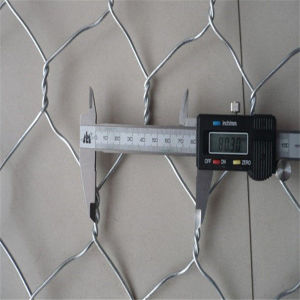 Cheap 3/4 Inch Galvanized Hexagonal Wire Netting pictures & photos