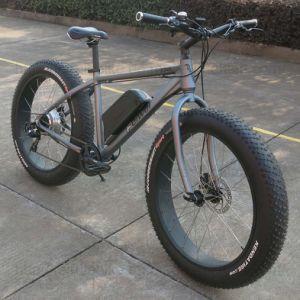 Fat Tire Snow Beach Cruiser Electric Bike (TDE10Z) pictures & photos