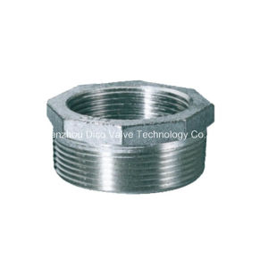Casting BSPT, Bsp Thread Stainless Steel Bushing pictures & photos