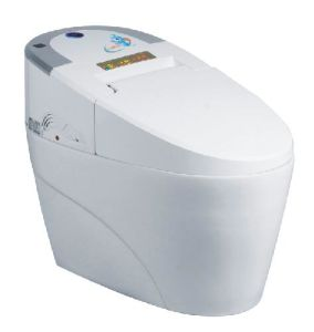 Heat Accumulation Intelligent Toilet pictures & photos
