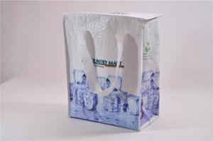 Outdoor PP Woven Valve Bags /Export PP Woven Bag /PP Non Woven Cooler Bag pictures & photos