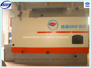 Packaged Biomass Steam Boiler for Industrial Applications pictures & photos