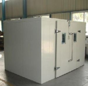 Yuyan Blast Freezer for Frozen Food pictures & photos