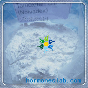 Nolvadex Legal Anabolic Steroids Tamoxifen Citrate for Men Hair Loss Treatment pictures & photos