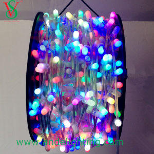 12V Highly Waterproof LED Clip String Light in PVC Material for Tree Decoration pictures & photos