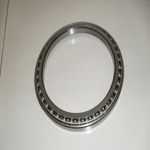 Excavator Walking Bearing for Hot Sales pictures & photos