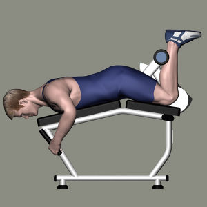 Gym Equipment Fitness Equipment for Prone Leg Curl (M7-2009) pictures & photos