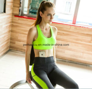 Women Sports Bra Yoga Pants Gym Wears Athletic Clothes pictures & photos