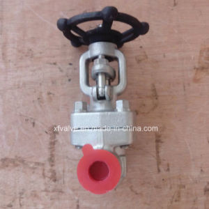 API602 Forged Stainless Steel F316L Thread End NPT Gate Valve pictures & photos