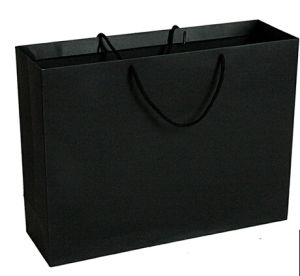 Back Colour Elegant Design Paper Bag (YY-B0200) pictures & photos
