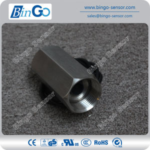 Ss Piston Type Flow Switch for Water pictures & photos