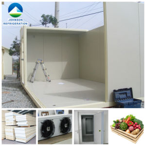 Cold Room Storage for Engineering Projects