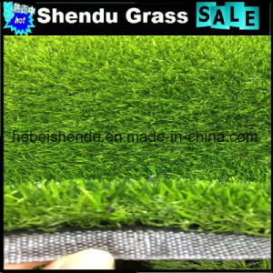 Cheap Artificial Grass 20mm From China Hebei pictures & photos