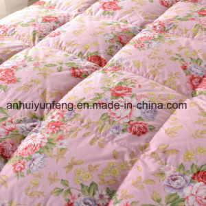 Yarn Dyed Pattern 40s Cotton Fabric White Duck Down Duvet pictures & photos