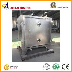 Fzgf Series Square Vacuum Drying Oven pictures & photos
