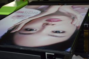 UV Printer 6090, Digital Metal Printing Machine pictures & photos