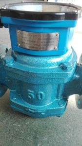 High Precision Cast Iron Roots Flow Meter pictures & photos
