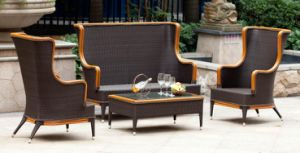 2013 New Design PE Wicker Sofa Set Outdoor Furniture/Garden Furniture (SF 080)