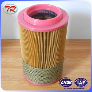China Manufacture HEPA Air Filter 1613950300 pictures & photos