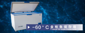 High Quality Freezer for Super Frozen Tuna with CE &ISO pictures & photos