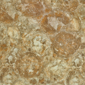 Microcrystal Stone, Glass Porcelain Flooring Tiles (AJCV8105) pictures & photos