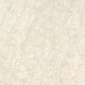 Building Material Royal Noble Polished Porcelain Flooring Tile (600*600 800*800) pictures & photos
