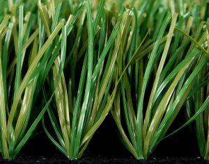 Synthetic Soccer Turf Grasses