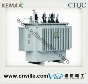 Distribution Transformer S13 10kv pictures & photos
