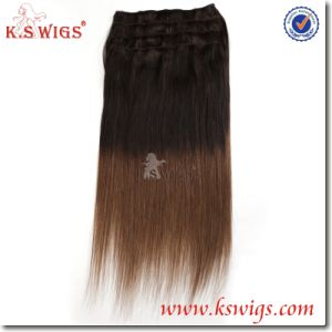 Indian Human Hair Extension Remy Clip Hair pictures & photos