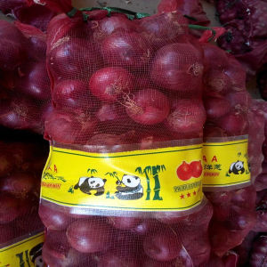 Fresh Onions Importers in Malaysia pictures & photos