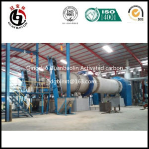 Guanbaolin Group Steam Activation Activated Carbon Factory pictures & photos