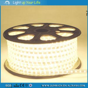 SMD5050 Tube LED Strip Light for Decoration 5m/Roll 12V pictures & photos