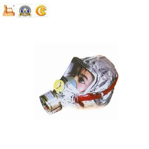 Police Equipment Disposable Gas Mask for Military pictures & photos