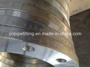 Aluminum 6061 T6 Forged Welding Neck Flange, Plate Flange, Aluminum 6061 T6 Flange pictures & photos