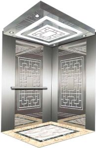AC-Vvvf Drive Home Lift/Elevator with German Technology (RLS-105) pictures & photos