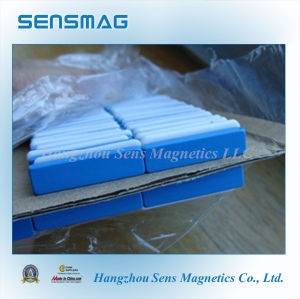 Permanent Magnets NdFeB Magnets with Blue Teflon Coated pictures & photos