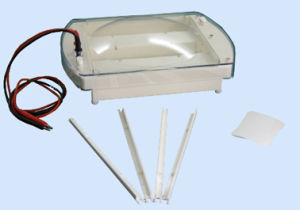 Good Quality Electrophoresis Cell in Hot Sales pictures & photos