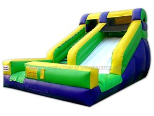 Inflatable Slide for Commercial Use (B4030) pictures & photos