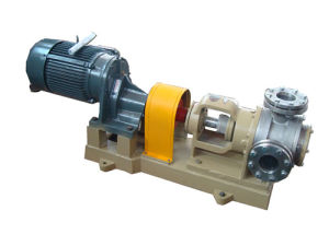 High Viscosity Internal Gear Pump (NYP24) pictures & photos