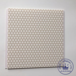 Printing Plastic Panel PVC Ceiling and Wall Panel for Home Decoration (RN-66) pictures & photos