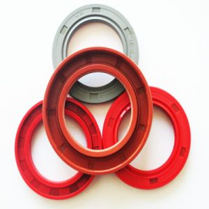 FKM NBR Tc Oil Seals Mechanical Seals with Excellent Quality pictures & photos