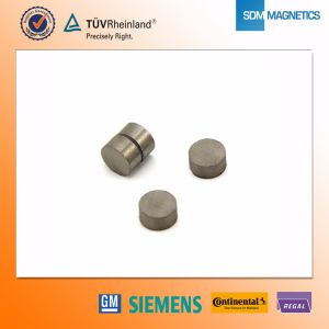 D10*5mm SmCo Magnet pictures & photos